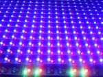 closeup-of-some-light-emitting-diodes-on-a-sign