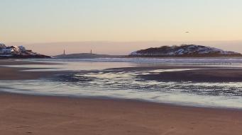good harbor beach jan 2015 19