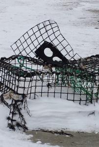 lobster trap 1